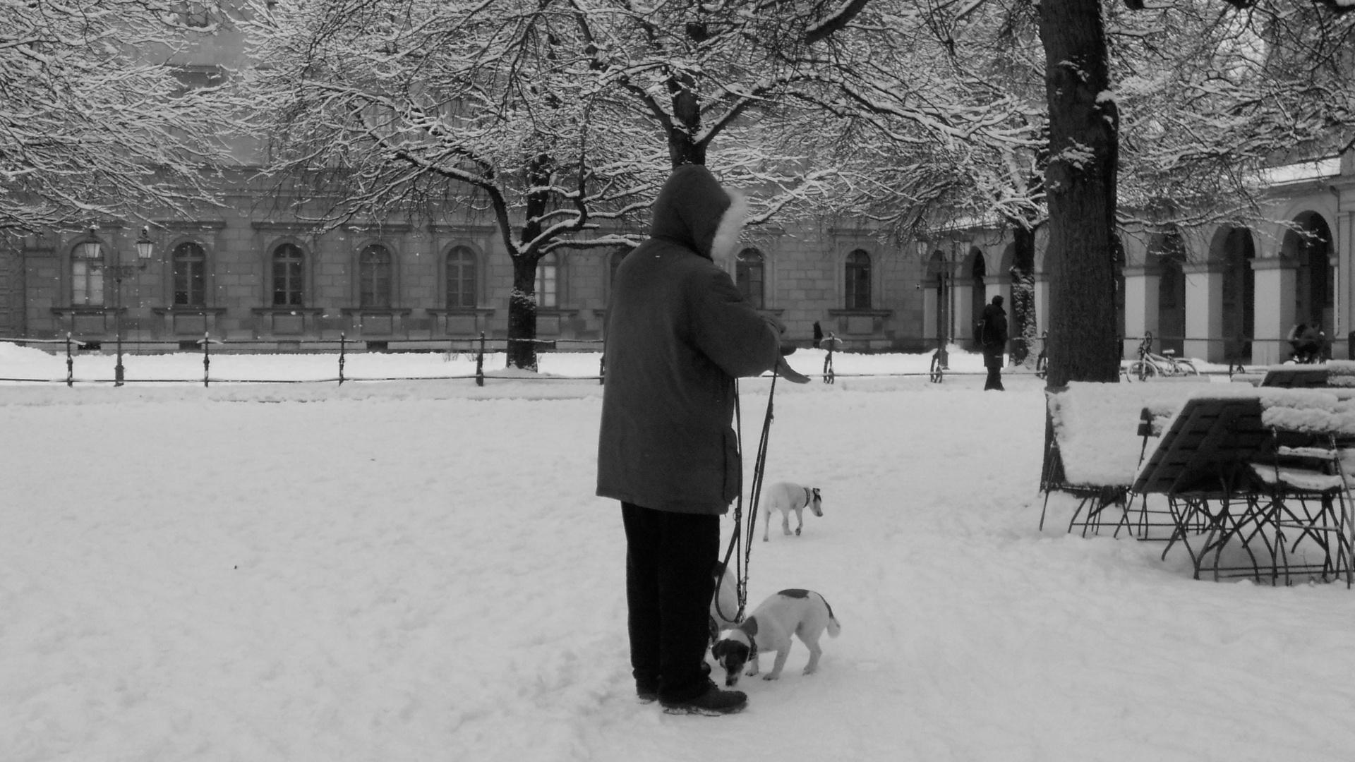 Ach wie schön ist Faschingszeit und Schnee, Schnee, Schnee...