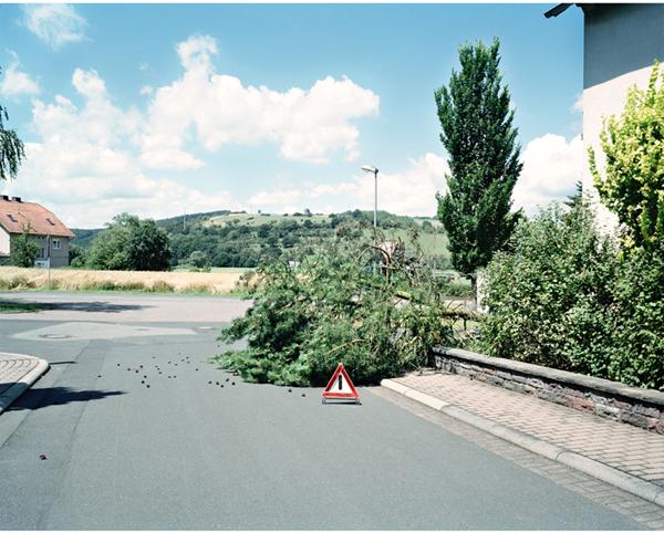 Achtung Baum
