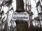 Achtung, gefräßiger Baum !