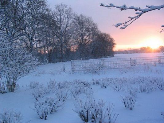 Acker im Schnee