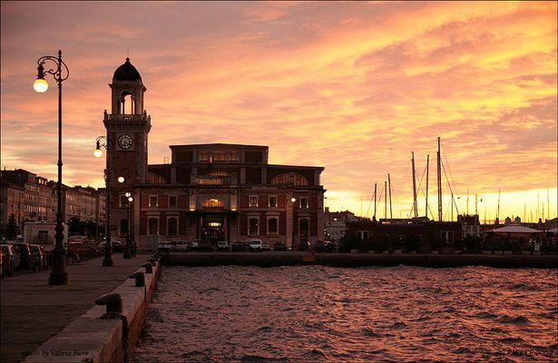 Acquario di Trieste