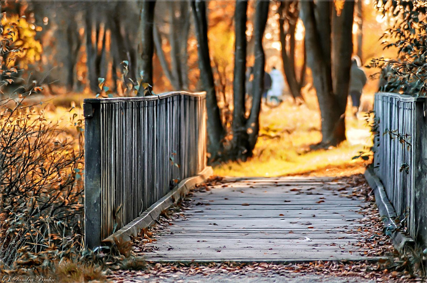 °across the bridge°