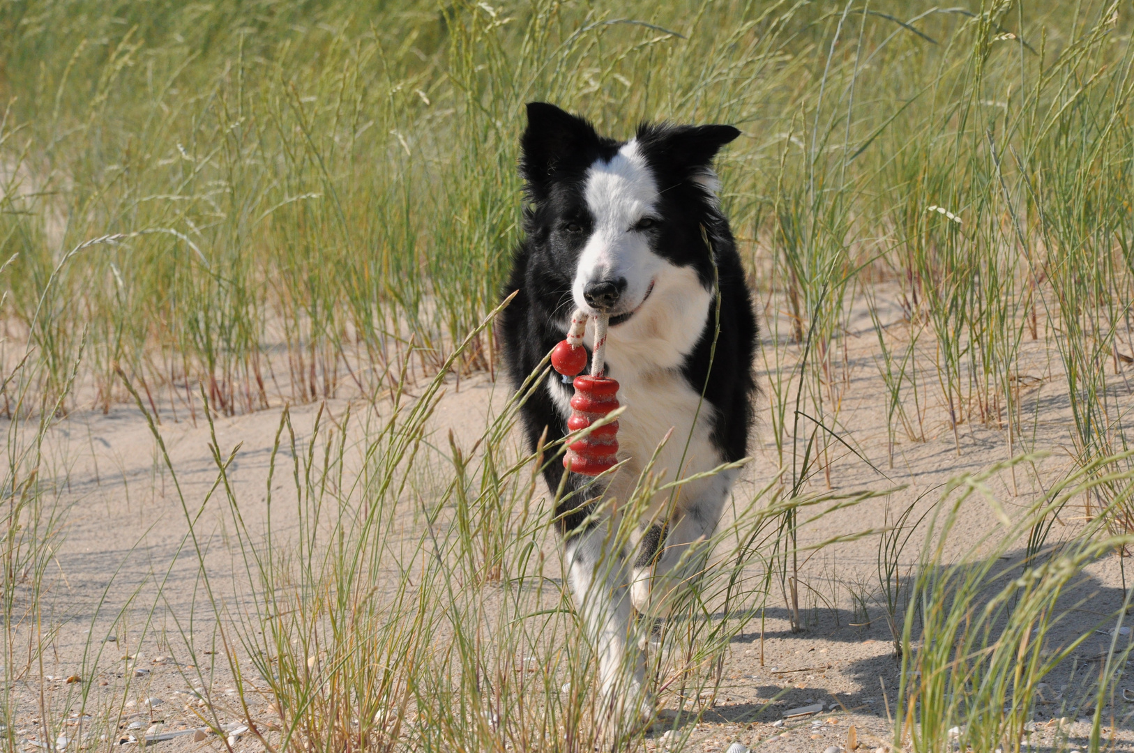 Action am Strand