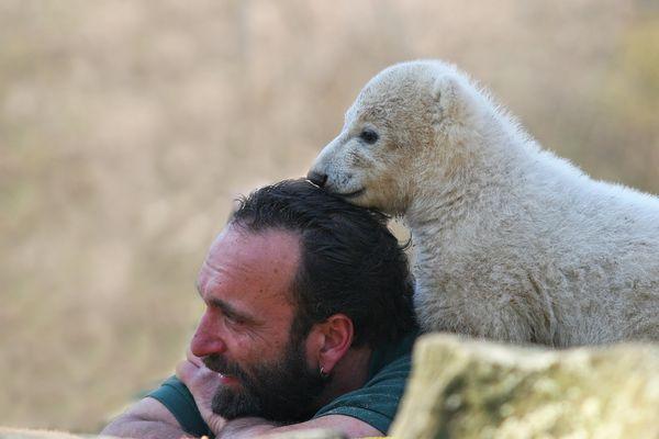 Adieu Knut