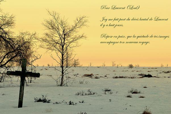 Adieu Laurent (Loul)