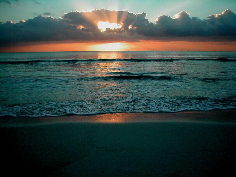 Adieu Sonne