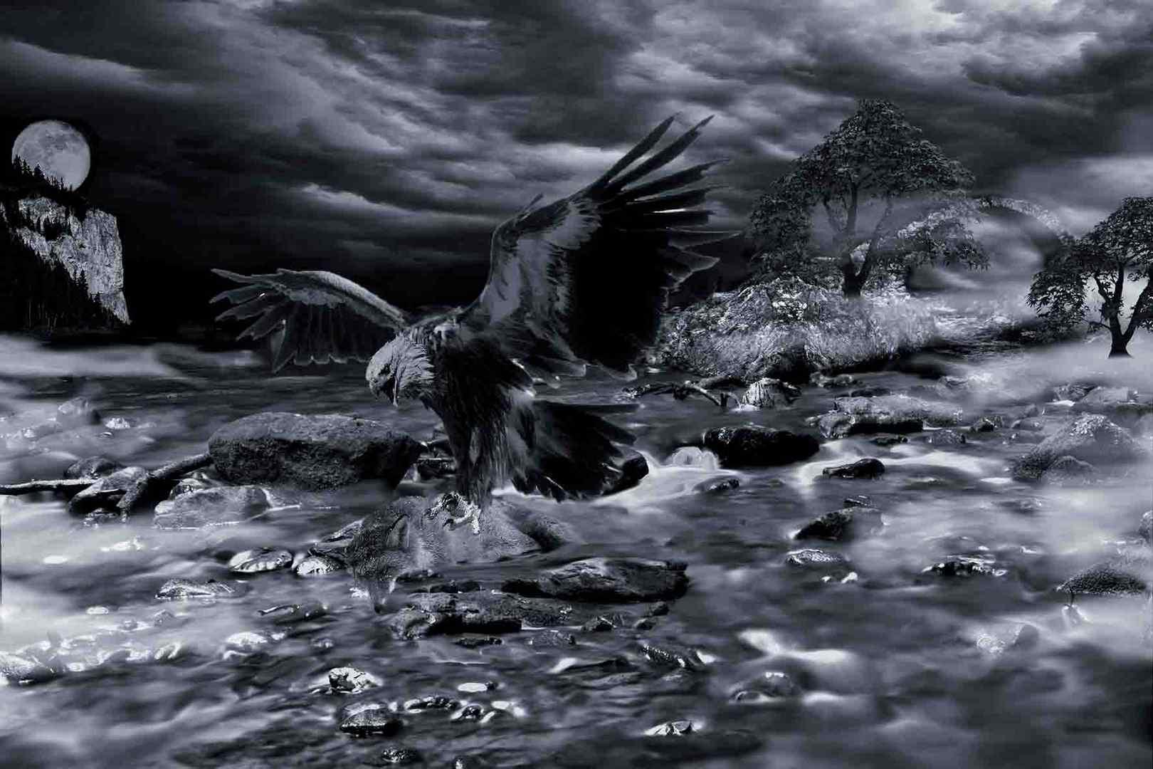 Adler Attacke