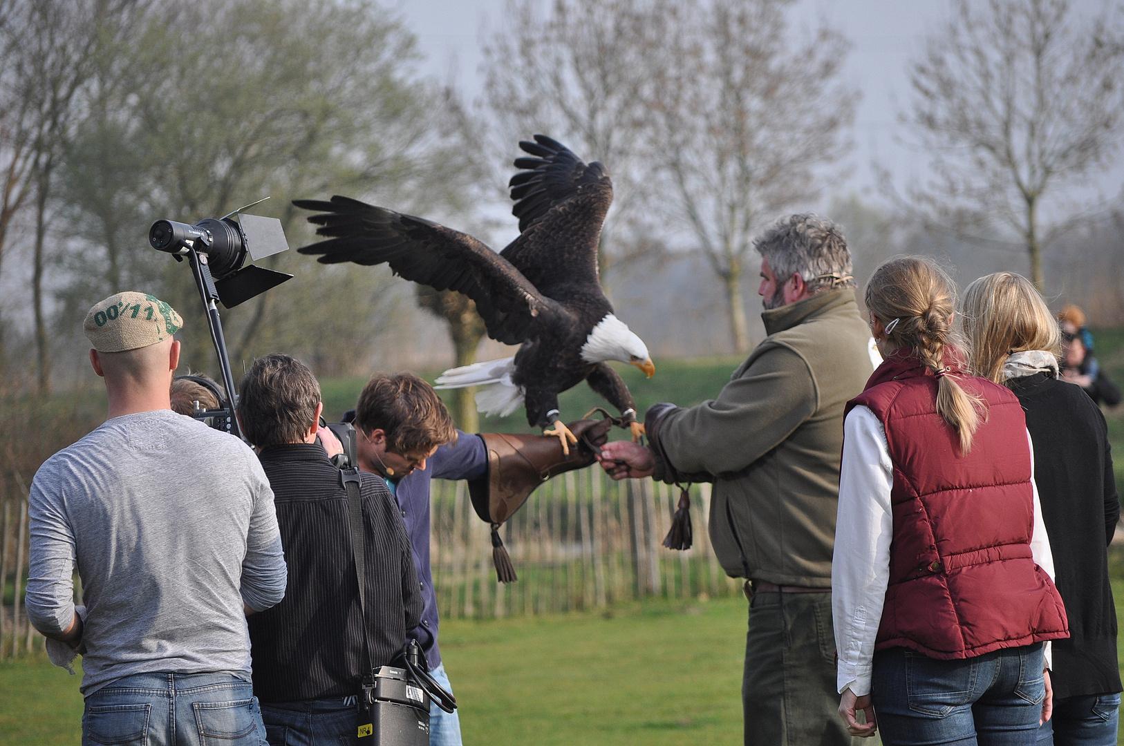Adler-Übergabe