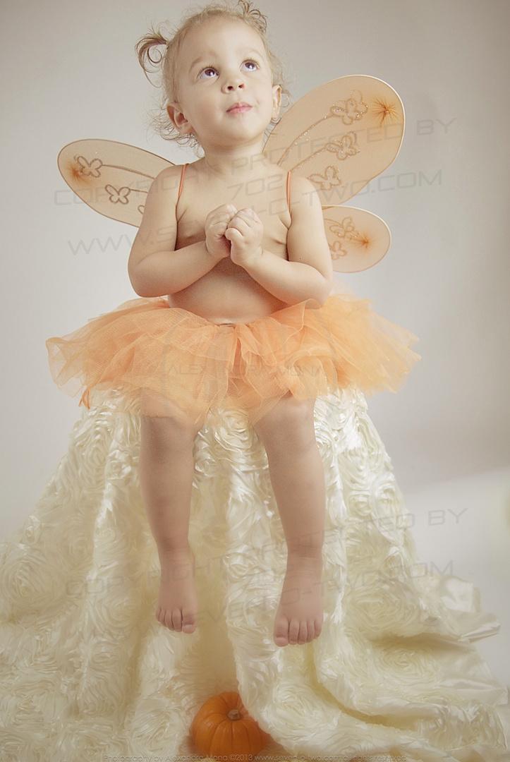 Adorable Pumpkin Fairy