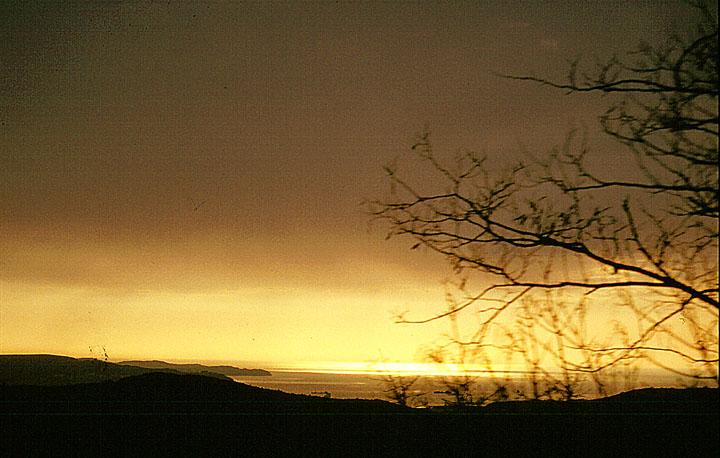 Adria 1989