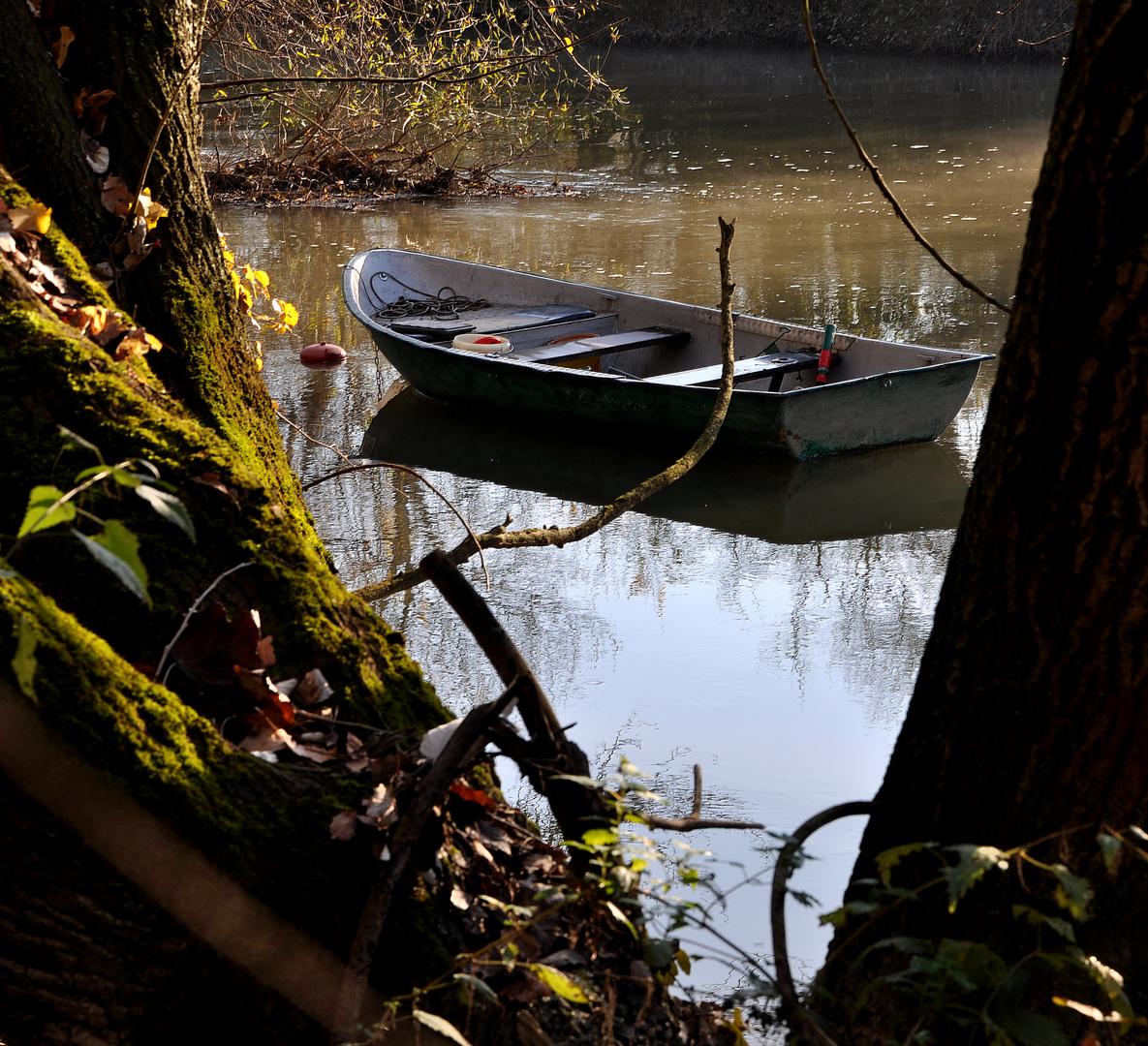 Advent-Ruhe....auch für Fische(r)