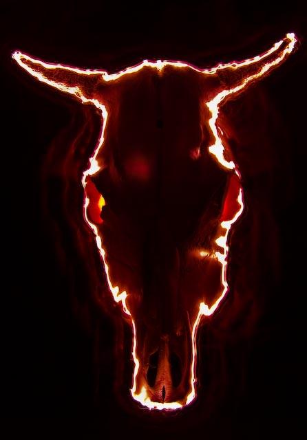 advent,advent ein kuhkopf brennt