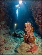 adventure diving 2