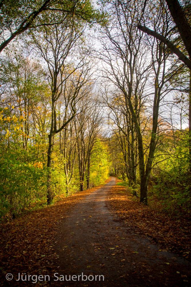 Ägidienberger Herbst