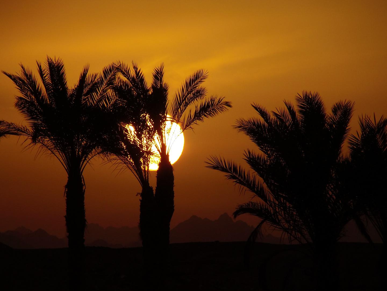 Ägypten Sonnenuntergang (Stil 80er Fototapete)