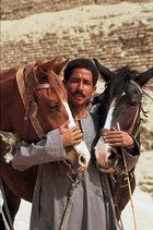 Ägypter lieben Pferde - vor Sakara
