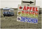 Äpfel, Birnen, Zwetschken