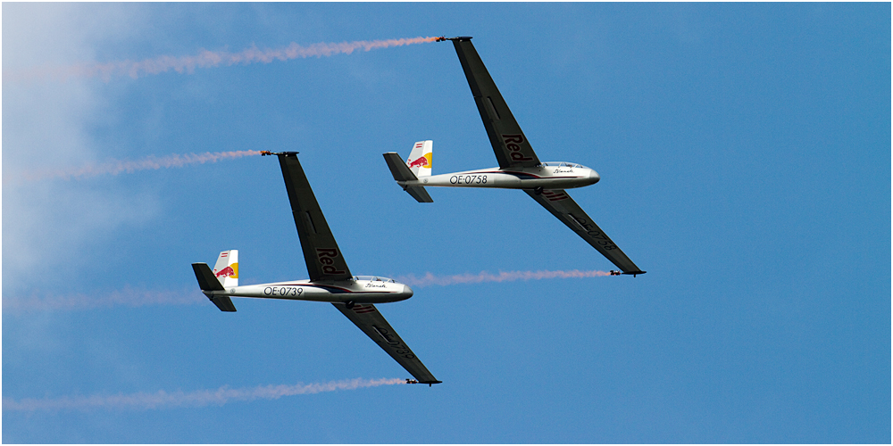 AERO '10 - Synchrongliders