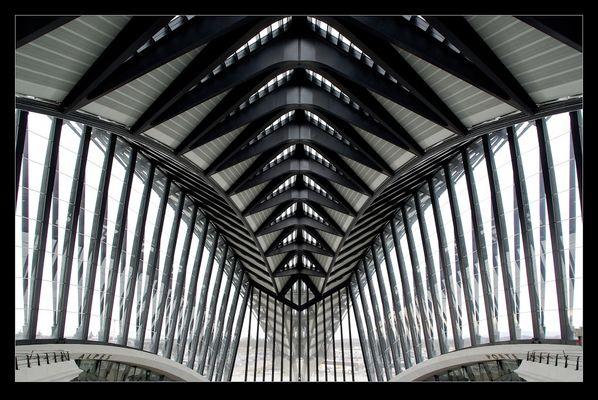 AeroGare Lyon Saint Exupéry (i)