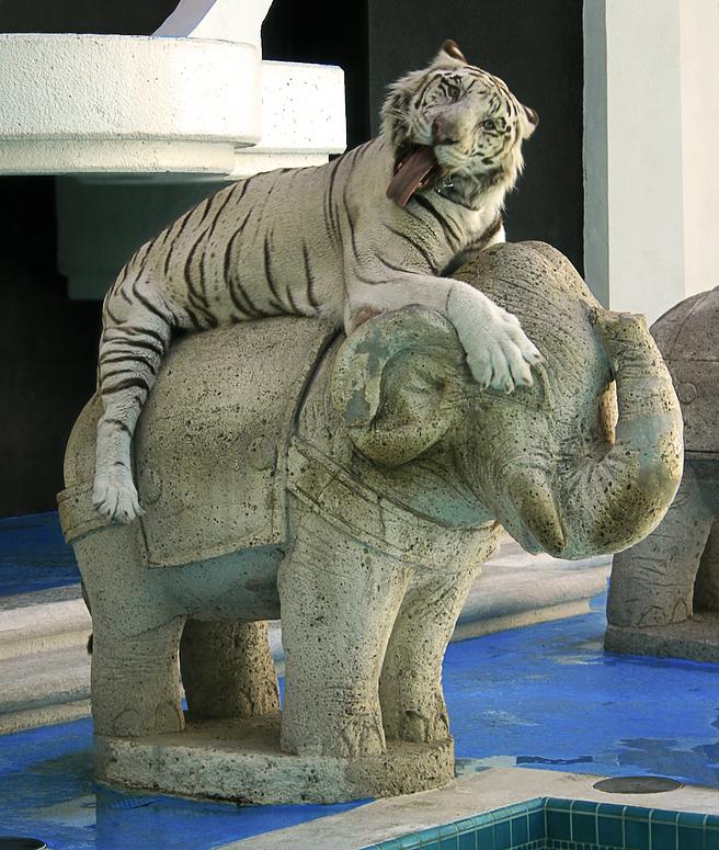 Ätsch - das ist mein Elefant