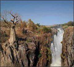 Affenbrotbaum bei den Epupafällen