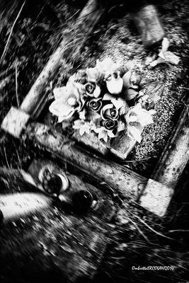 Affetti Dimenticati - 8