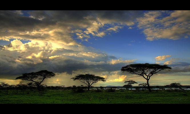 Africa Impressions II