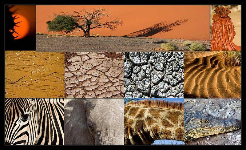 African Details