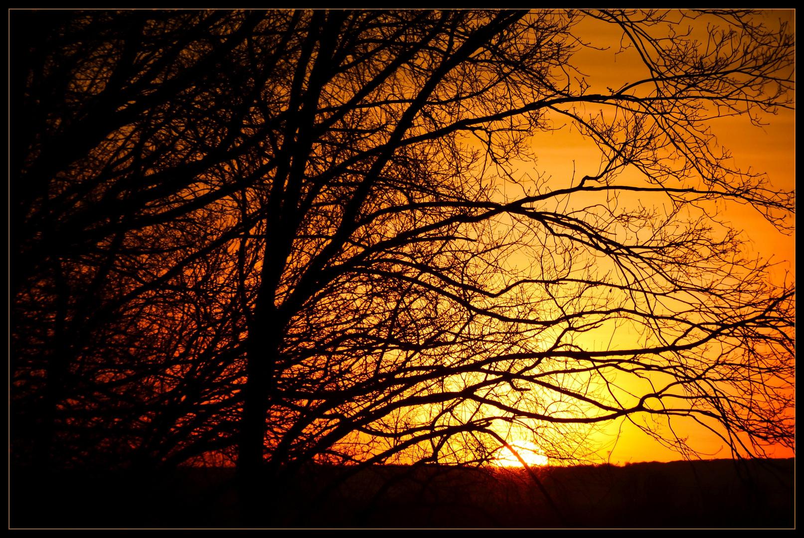"""African sun"" in Hessen"
