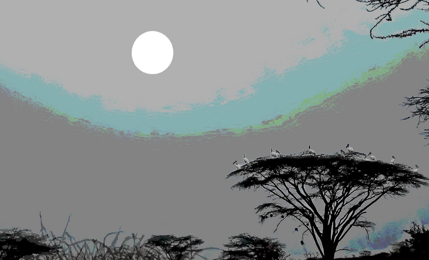 Afrika ! Pelikane im Mondlicht. Spielerei.