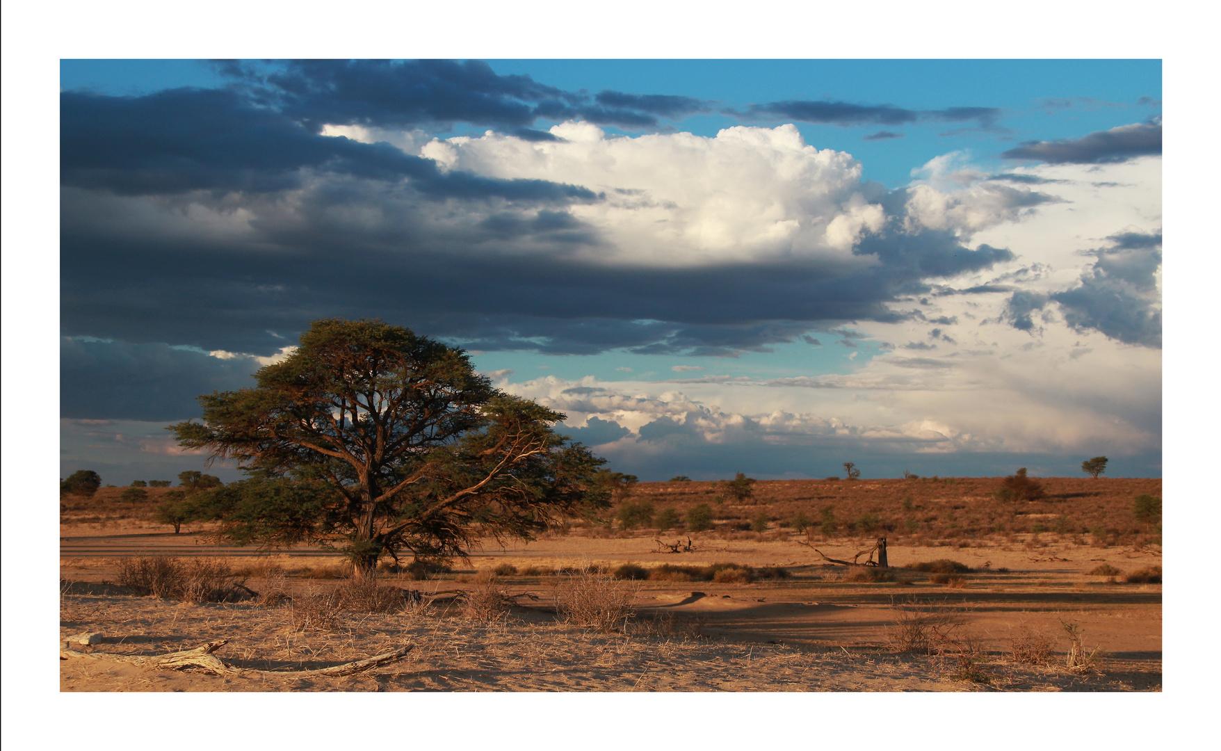 Afrika, wie ich es mag