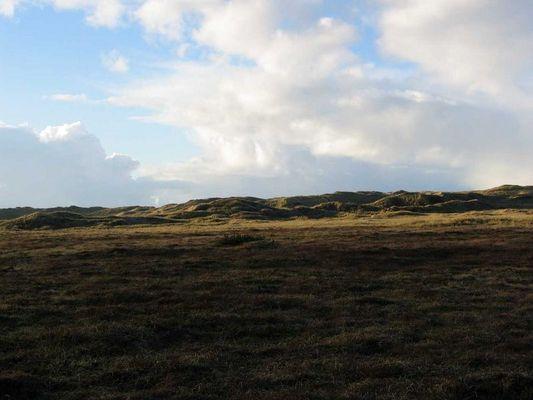 Afrikanische Steppe oder Dänemark?