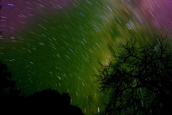 Afrikanischer Sternenregen