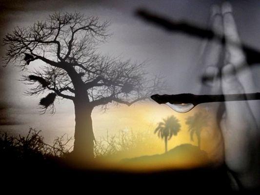 Afrique La Prière pour l'eau base de vie élément de survie