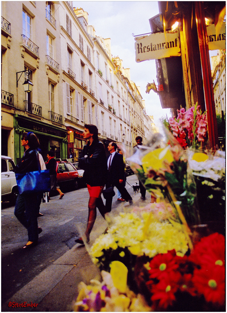 Afternoon in Early Autumn, Paris
