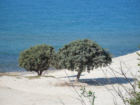 Agios Ioanis