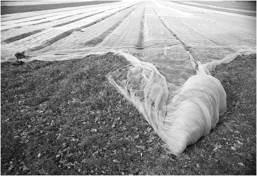 Agrarlandschaften 2013-25
