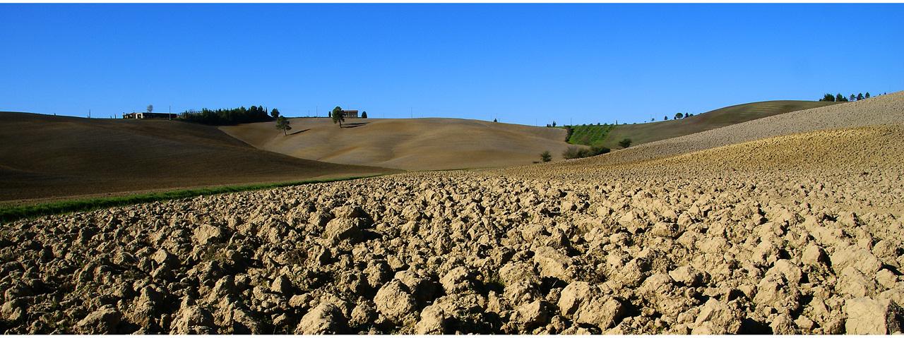 Agricoltura autunnale nella Toscana