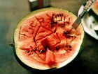 AgroMelone‡