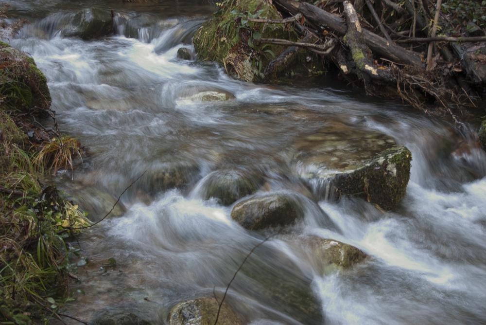 Agua = a vida