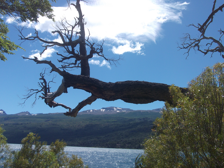Agua-bosques-cielo-nubes