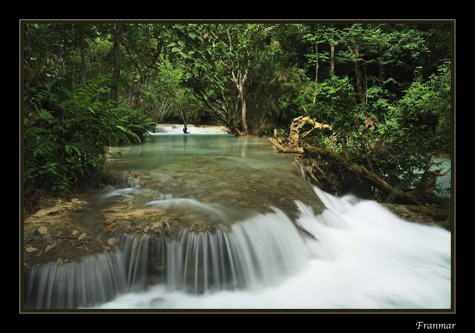 Agua viva....seda...