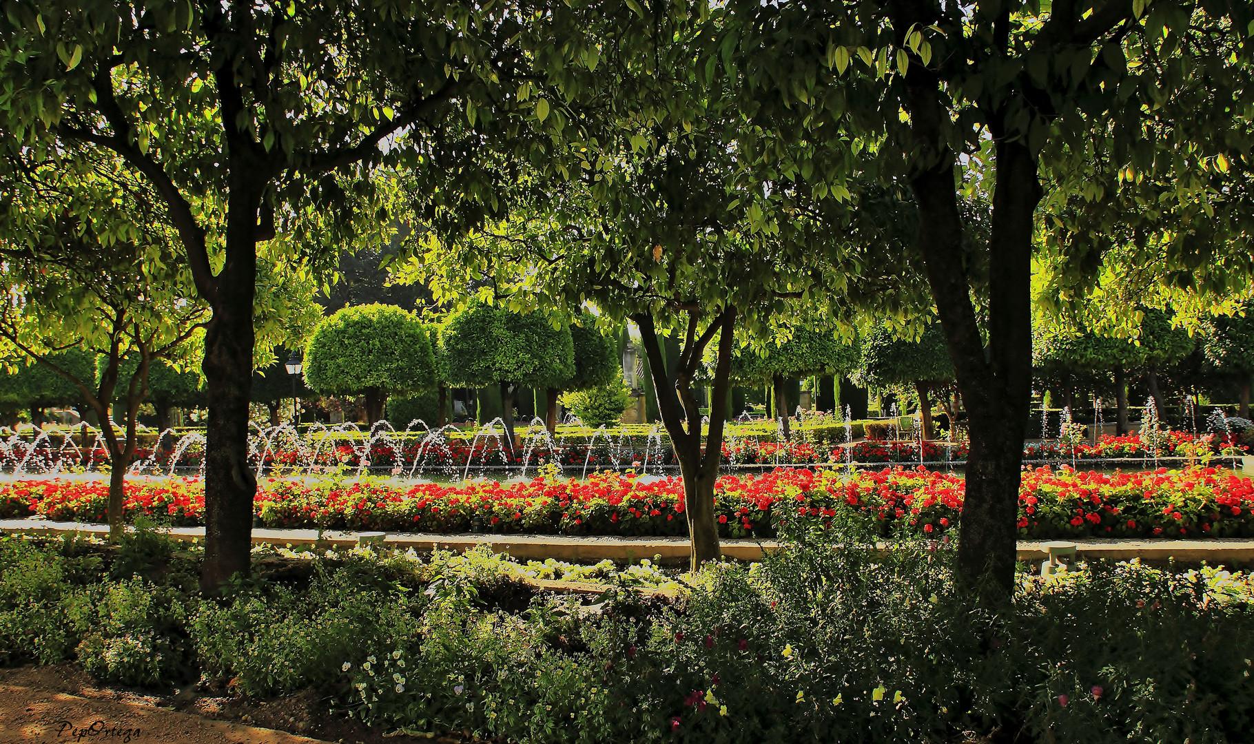 Agua y flores