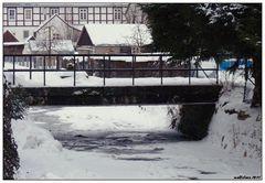 Ahle im Winter