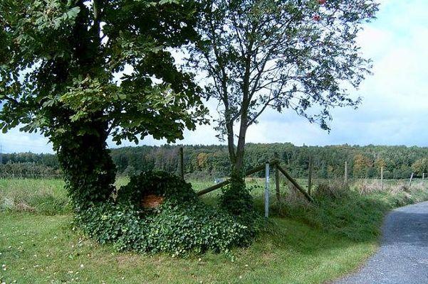 Ahr-Venn-Weg