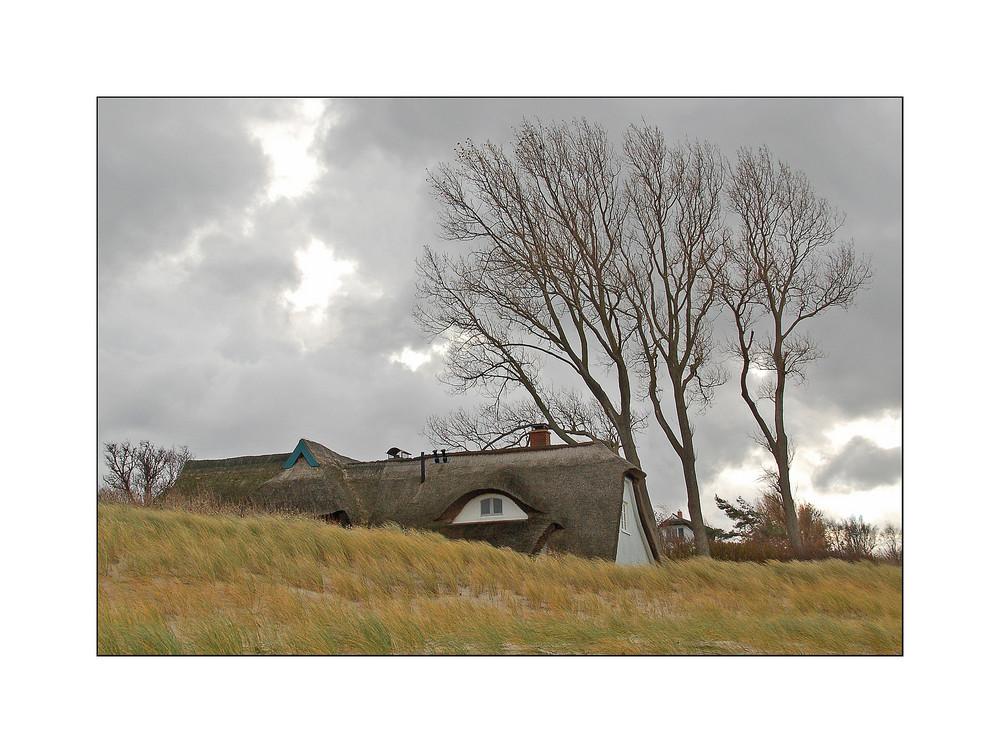 Ahrenshoop - Am Grenzweg 2