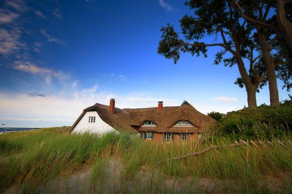 Ahrenshoop - Reetdachhaus am Windflüchter