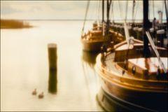 Ahrenshooper Hafenstorys #02