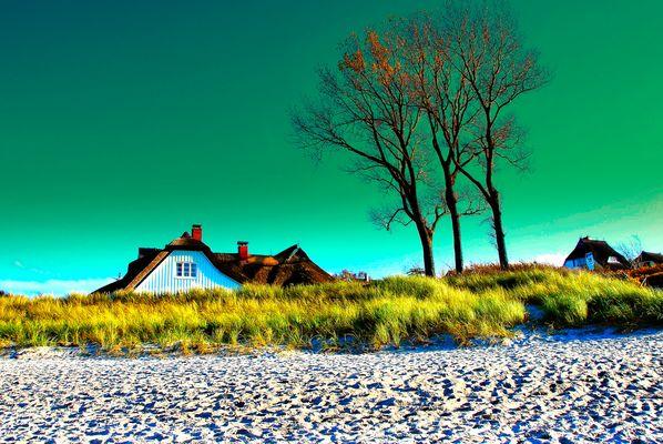 Ahrenshoop/Ostsee Bild 2