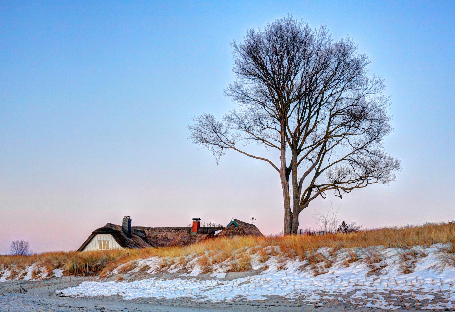Ahrenshoper Winterabend